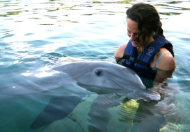 Stephanie Pappas and Dolphin Yogi